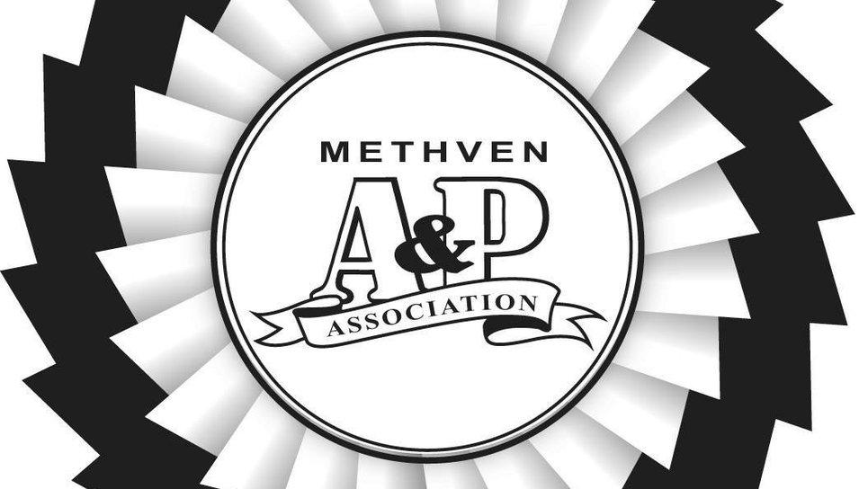 Methven Sheep