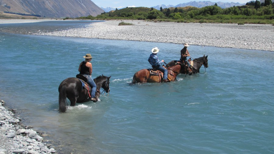 High Country Horse Adventures